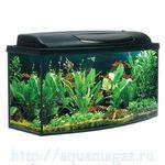 Аква-комплект РАO100 CLASSIC фигурный170л (100х40х50см) (аквариум+крышка-светильник 2х30Вт+рамка) Aquael
