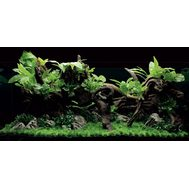"ArtUniq Jungle - Полный набор декораций ""Джунгли 120x50x50 см, фото 1"