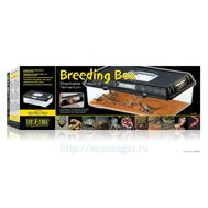 Контейнер для разведения Breeding Box большой