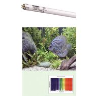 Лампа SYLVANIA Aquaclassic 18Вт 59,0см, цоколь G13