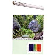 Лампа SYLVANIA Aquaclassic 25Вт 74,2см, цоколь G13