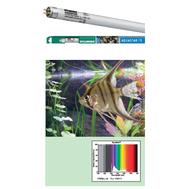 Лампа SYLVANIA Т5 Aquastar 80Вт 144.9см (промышленная упаковка)