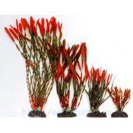 Растение Валлиснерия спиральная 30см красно-зеленое