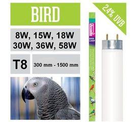 Лампа для птиц  🐦 🔥 Arcadia birds, Вид и Мощность ламп: Т5 300 мм / 8 Вт, фото