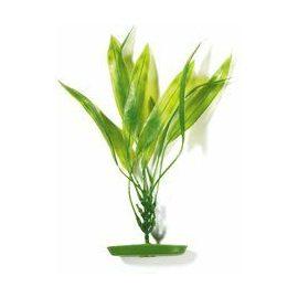 Растение Амазонка 30см зеленое
