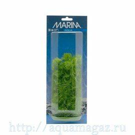 Растение Роголистник 30 см зеленое