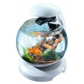 Tetra Cascade Globe White аквариумный комплекс белый 6,8 л
