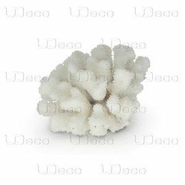 Коралл пальчиковый UDeco Finger Coral M