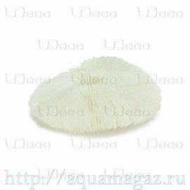 Коралл дисковидный UDeco Disk Coral S