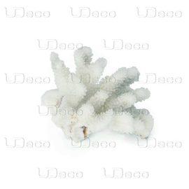 Коралл пальчиковый UDeco Finger Coral S