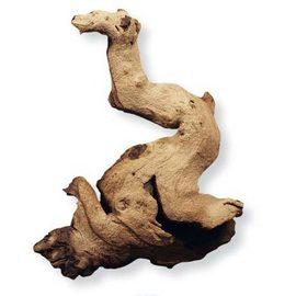 Коряга африканская Мопани малая