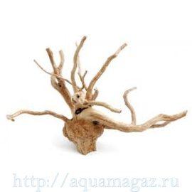 DRIFTWOOD L натуральная ветвистая коряга размер L (45-58см) (109344) Aquael