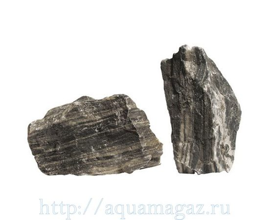 Камень Зебра, - 1 -aquamagaz.ru