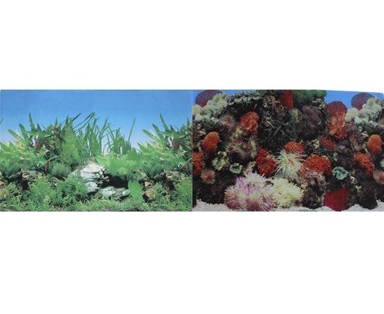 Фон Кораллы и Растительный 50х100см, - 1 -aquamagaz.ru