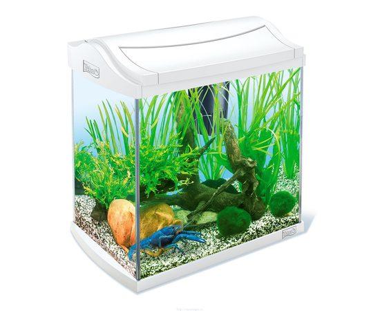 Аквариум для раков AquaArt Crayfish Discover Line белый 30л 38х26х42см , фото