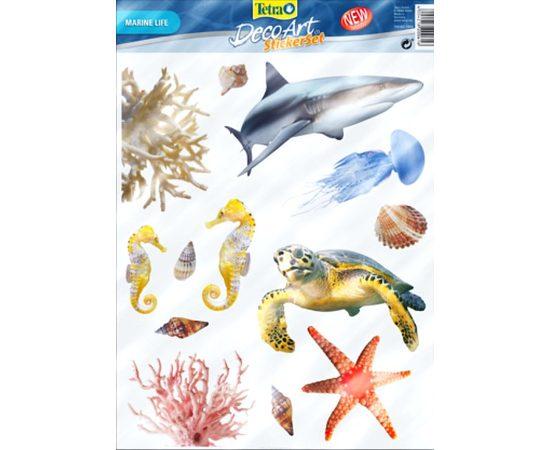 Фон Акула и Кораллы 49 см., фото 1