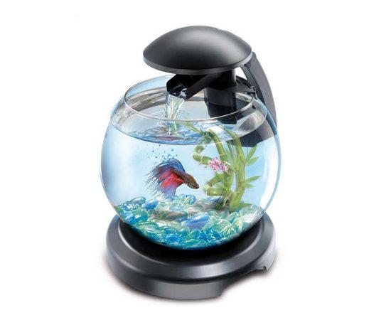 Tetra Cascade Globe аквариумный комплекс черный 6,8 л, фото , изображение 5
