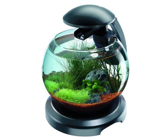 Tetra Cascade Globe аквариумный комплекс черный 6,8 л, фото