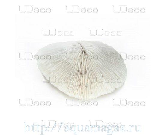 Коралл дисковидный UDeco Disk Coral M, - 1 -aquamagaz.ru