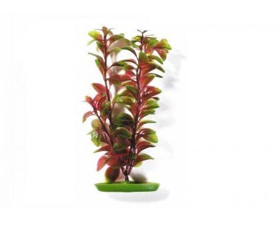 Растение пластиковое Людвигия 30см красно-зеленое , фото