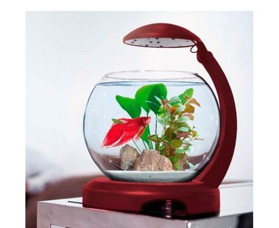 Аквариум Tetra Cascade Globe 6,8л круглый с LED светильником бордовый, - 4 -aquamagaz.ru