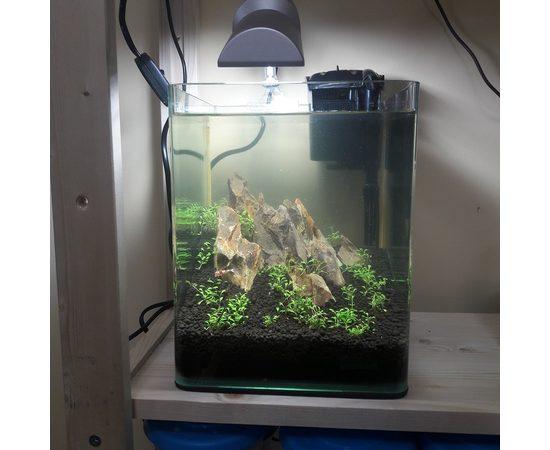 Нано аквариум 10 литров Dennerle (Дизайн/Оформление), - 1 -aquamagaz.ru