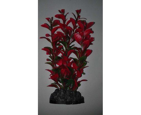 Растение пластиковое Людвигия 20см красно-зеленое, - 1 -aquamagaz.ru