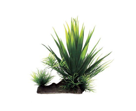 Растение Агава в миксе растений 20x16x18 см Art Uniq, фото