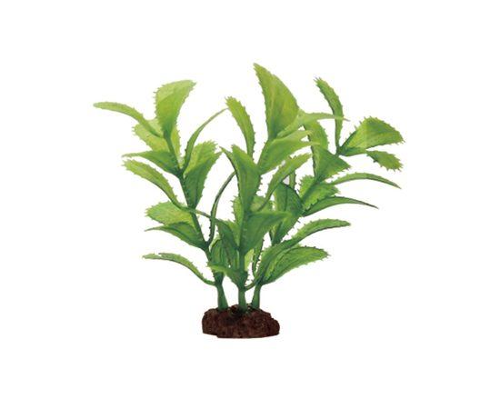 Набор растений Прозерпинака 10 см 6 шт Art Uniq, фото