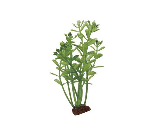 ArtUniq Rotala Set 6x10 - Набор искусственных растений Ротала 10 см 6 шт, фото