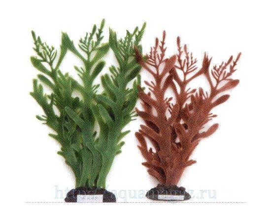 Растение Коралл ветвистый 20 см коричневое, - 1 -aquamagaz.ru