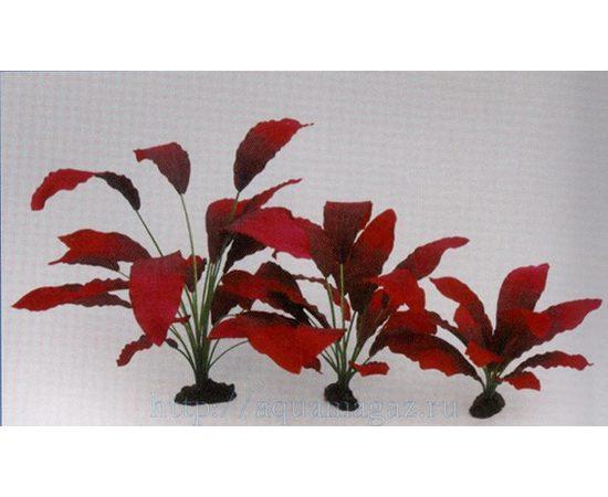 Растение Эхинодорус Кляйн Бер 20см шелковое, фото