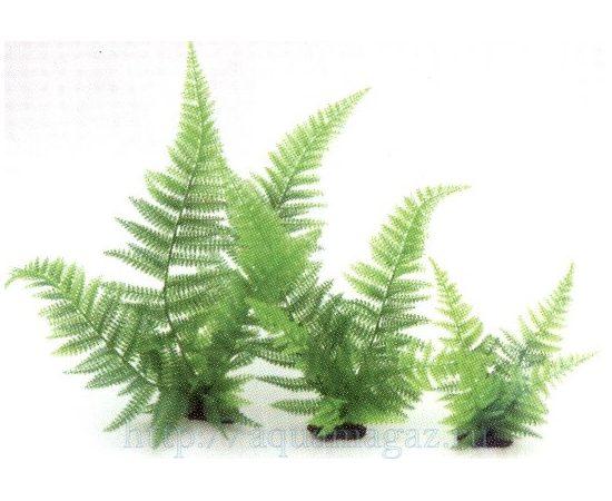 Растение Папоротник 40см зеленое, фото