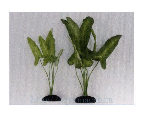 Растение Сингониум цветное 30см шелковое, фото