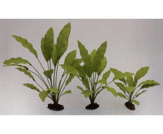 Растение Эхинодорус Селовианус 40см шелковое, - 1 -aquamagaz.ru