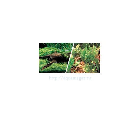 Фон Японские растения и Свежая вода 45 см 7,5 м , фото , изображение 2
