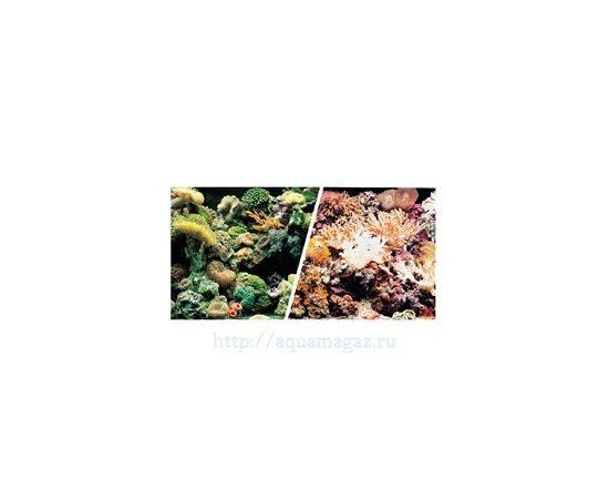 Фон Морской риф и Кораллы 45см 7,5 м , фото , изображение 2