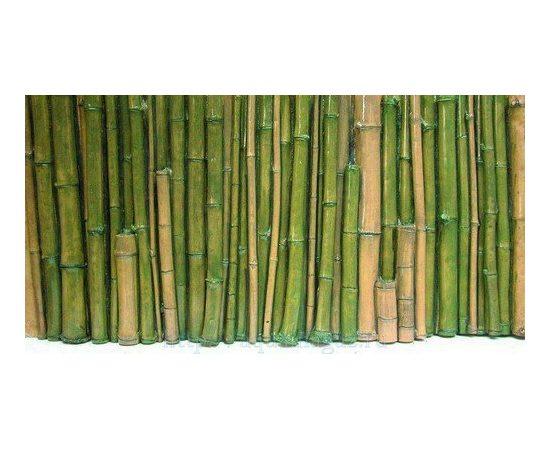 Фон рельефный Бамбук 118х58см зеленый, фото
