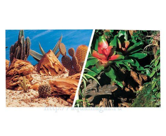 Фон Кактусы и Террариум 30 см 7,5 м, фото
