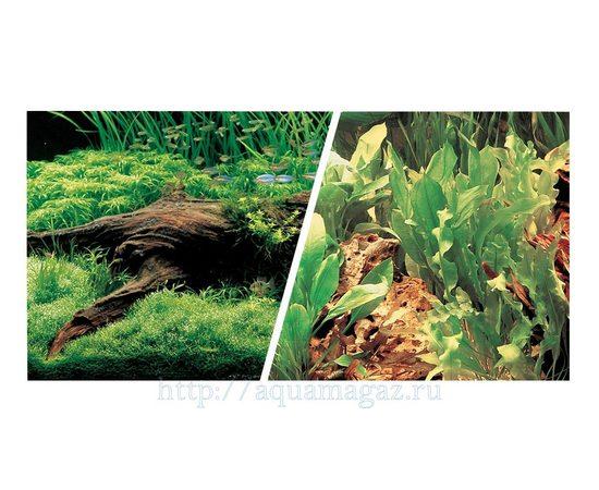 Фон Японские растения и Свежая вода 45 см 7,5 м , фото