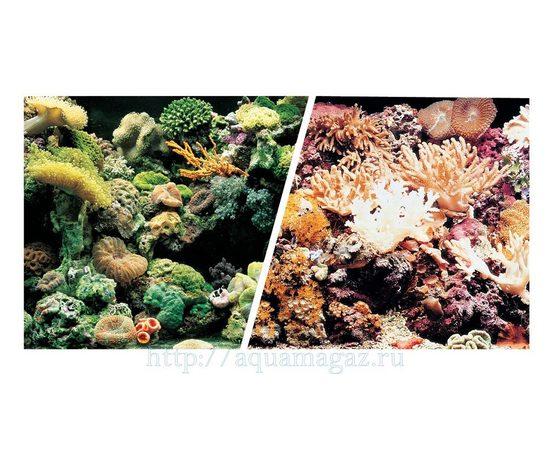 Фон Морской риф и Кораллы 45см 7,5 м , фото