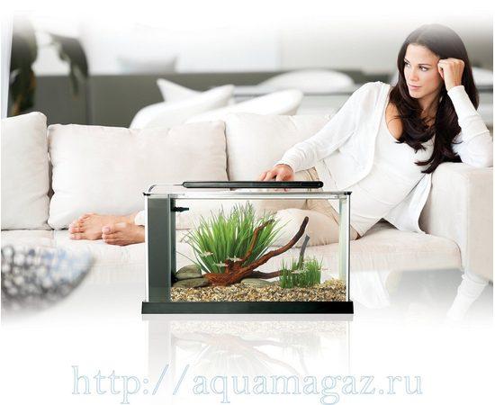 Аквариум Fluval 19 литров SPEC 5 черный, - 8 -aquamagaz.ru