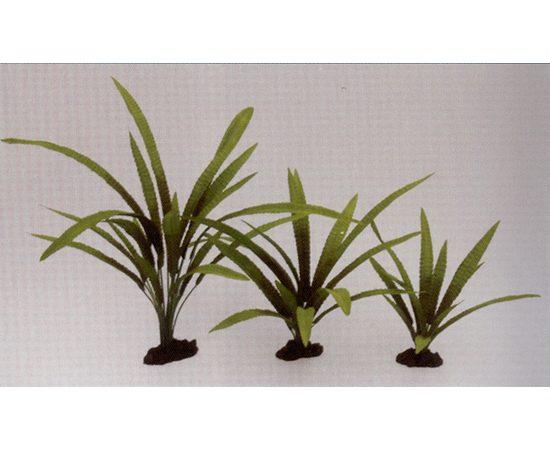 Растение Криптокорина Балансе 40см шелковое, фото