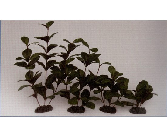 Растение Гигрофила 13см шелковое, фото