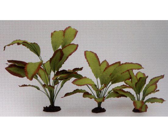 Растение Эхинодорус Озирис 30см шелковое, - 1 -aquamagaz.ru