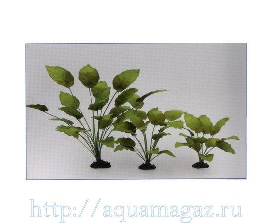 Растение Анубиас Бартера 13см шелковое, - 1 -aquamagaz.ru