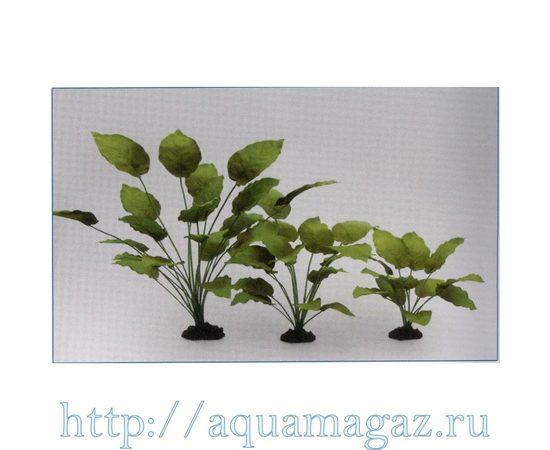 Растение Анубиас Бартера 30см шелковое, - 1 -aquamagaz.ru