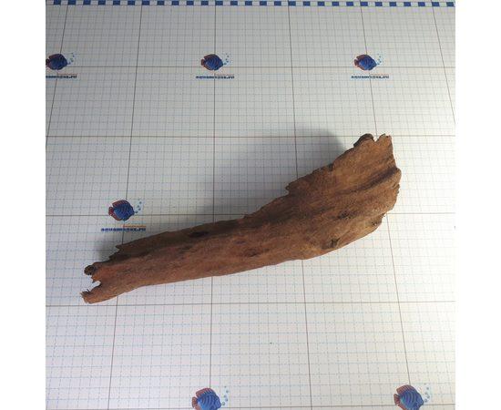 Коряга мангровая средняя 25-40 см L, - 1 -aquamagaz.ru