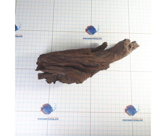 Коряга мангровая средняя 25-40 см L, - 2 -aquamagaz.ru