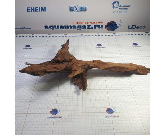 Коряга мангровая XL 35- 45см, фото , изображение 5
